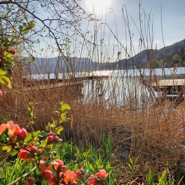 Frhlingszeit am Keutschacher See  spring lake lago beachlife beachhellip