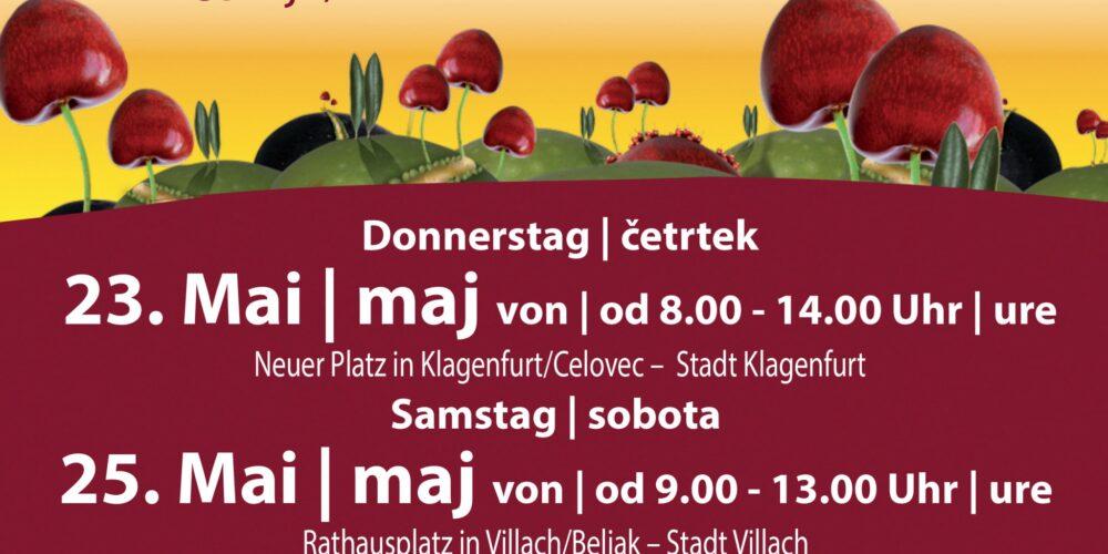 Kirschenfest beim Lindwurm