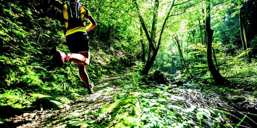 Trail Running Festival macht Station am Wörthersee