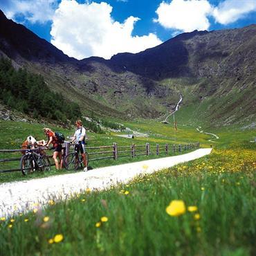 Aktiv-genussvolle Almenwelt: Zu Fuß hin, mit dem Mountainbike zurück. Foto: djd/mts/www.gitschberg-jochtal.com