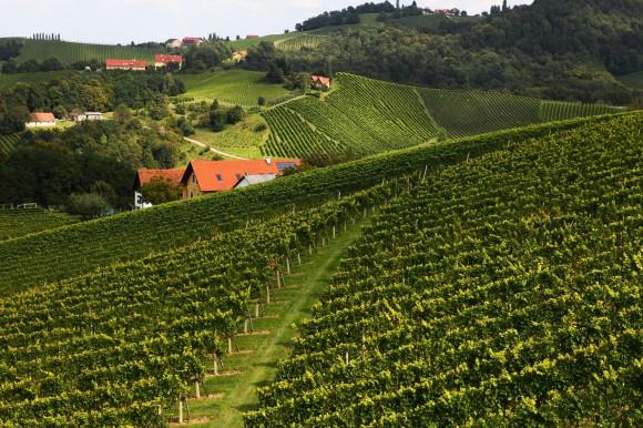 Sulmtal Sausal-Südsteirisches Weinland