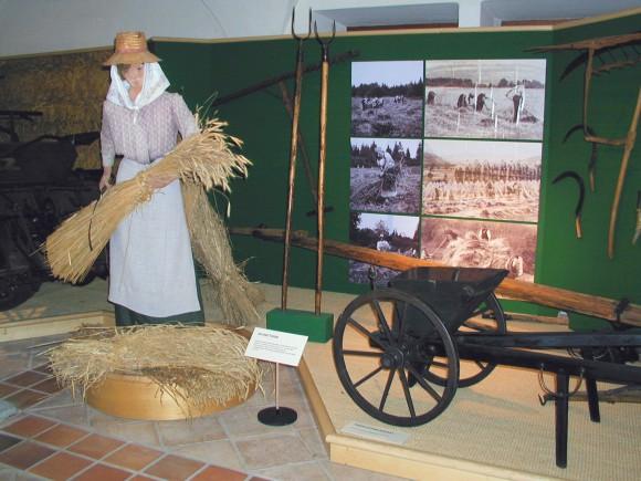 Ausflug ins Landwirtschaftsmuseum Schloss Ehrental in Klagenfurt.