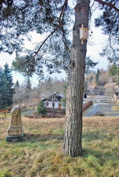 Nistkästen im Archäologischen Park Magdalensberg. Foto: Kleewein