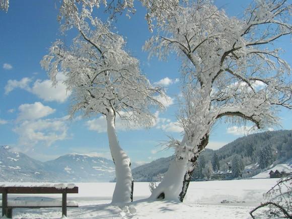 Winterliche Natur um den Millstätter See. Foto: KK/Reinhard Kager