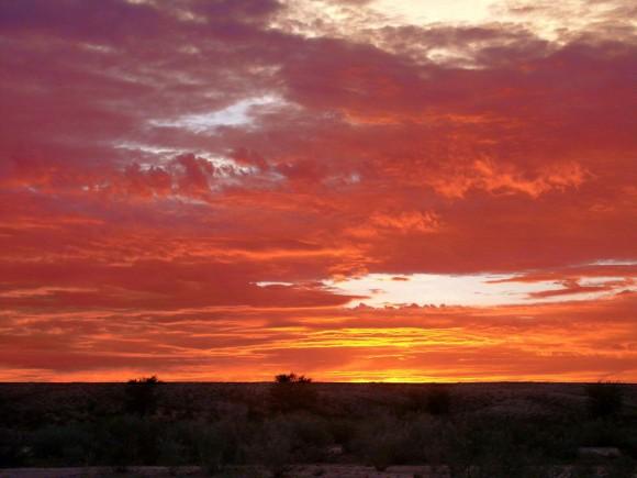 Sonnenuntergang über Savanne. Foto: Georeisen