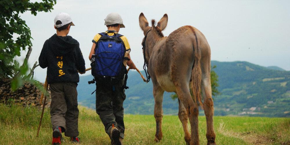 Wandern in Italien: Ideen für die Ferien in der Natur