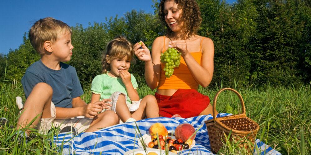 Picknickerlebnis im Burgenland