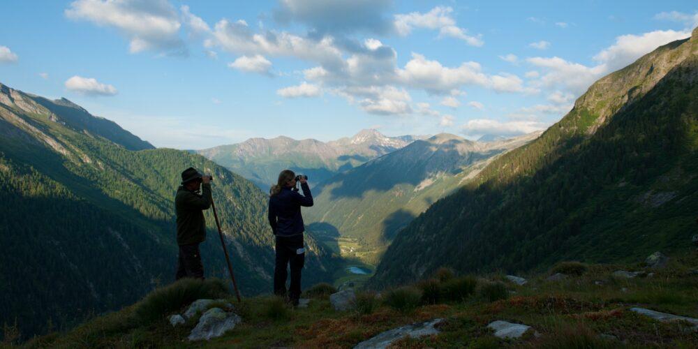 Ruf der Wildnis im Seebachtal