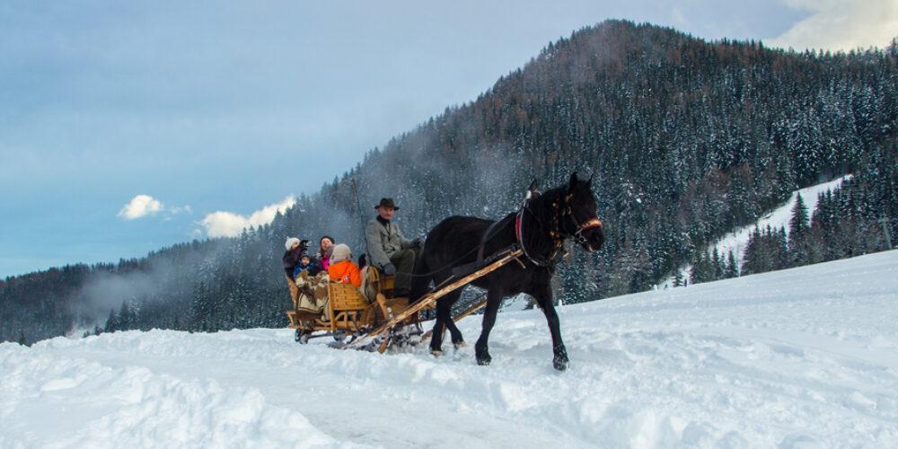 Wintererlebnis im Süden Österreichs
