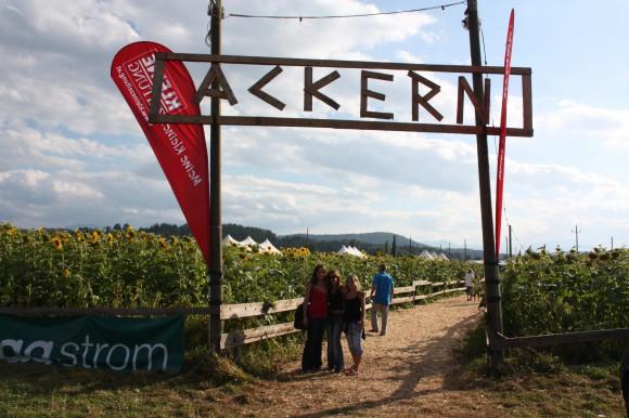 Ackern in Lendorf bei Klagenfurt.
