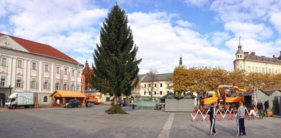 Über 18 Meter hoch: Der Christbaum auf dem Neuen Platz.