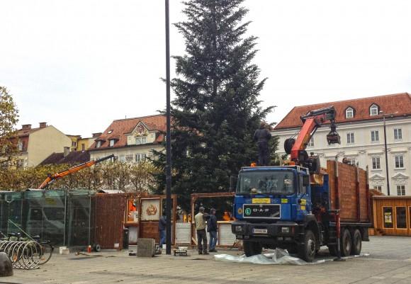 """Das ist er: """"Der Baum 2013""""."""